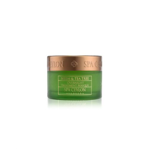 NEEM & TEA TREE –  Overnight Treatment Masque 100g